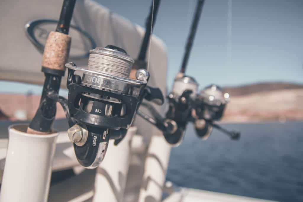 Fishing Reels: Types And Importance