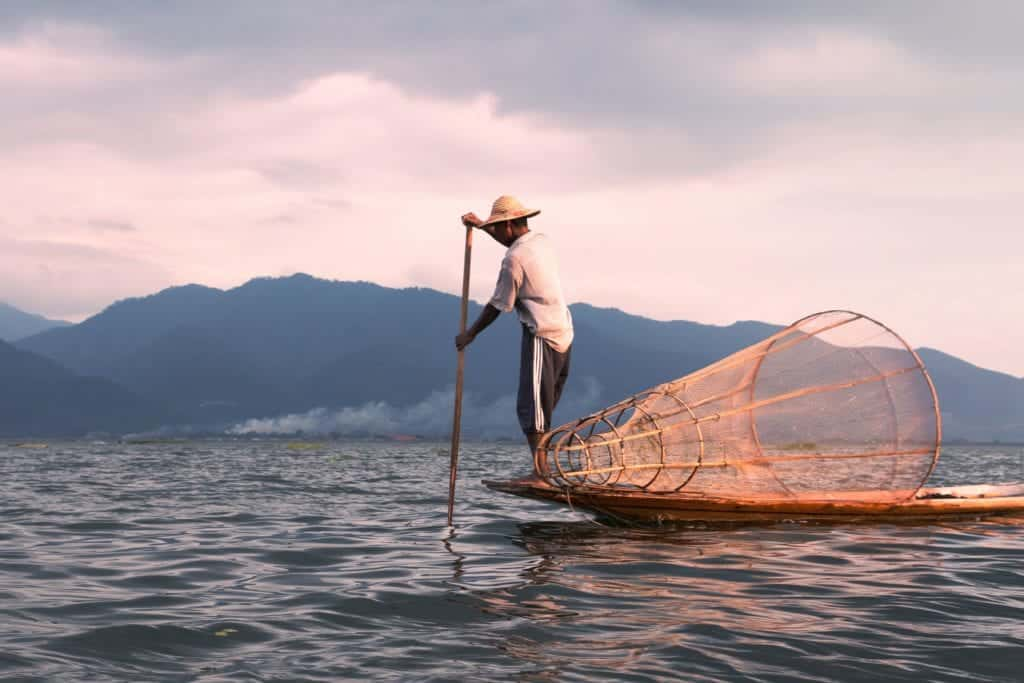 Types Of Fisher All Over The World