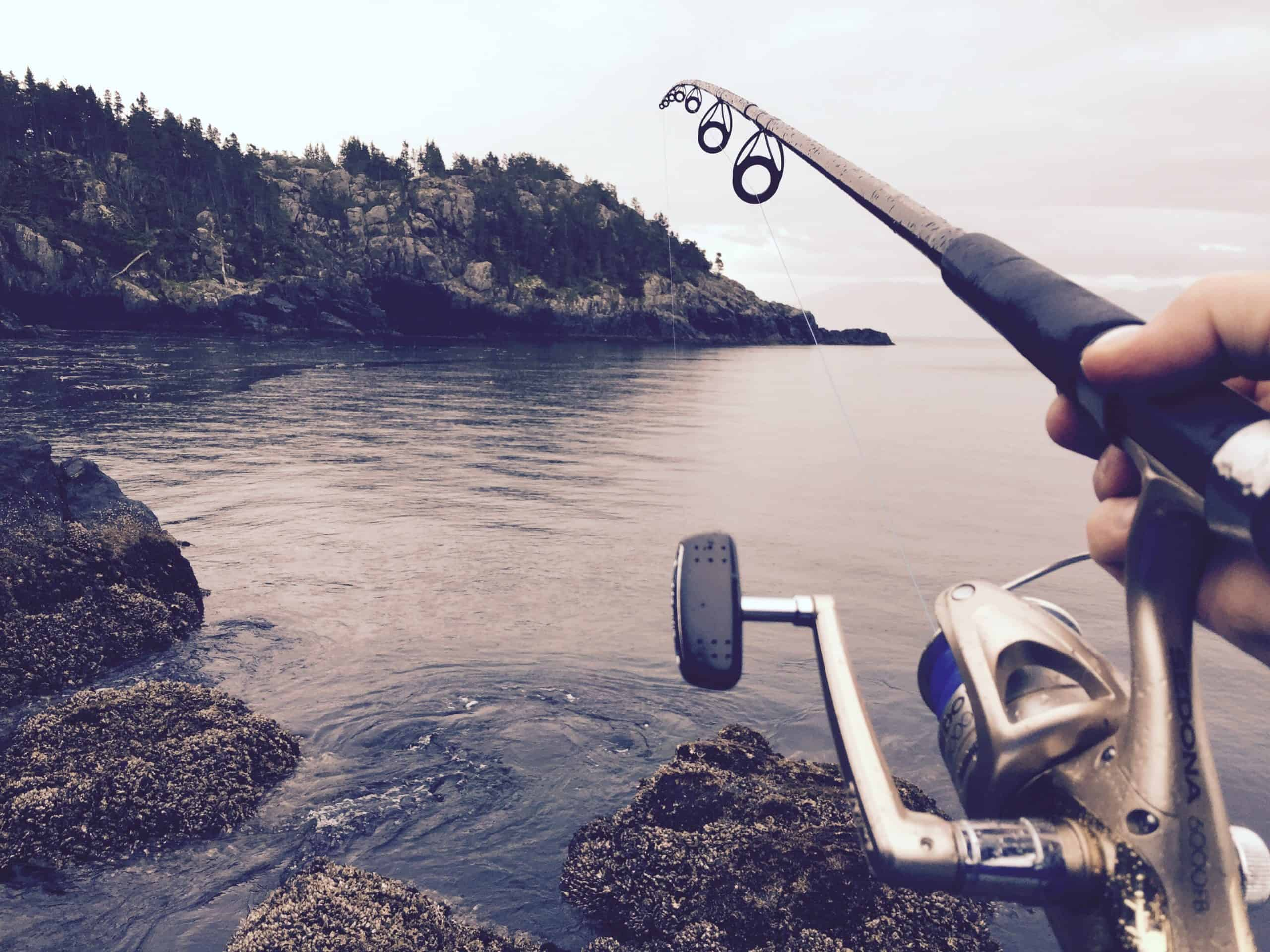Fishing Adventures: All About Fishing