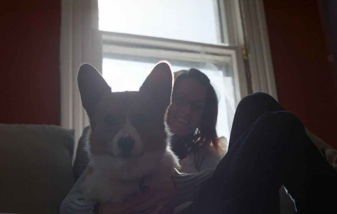A person and a dog sitting in front of a window
